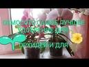Osmocote Осмокот для орхидей дозировка когда добавить влияние на цветение