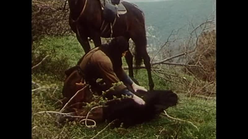 Берега 1977 Грузияфильм 7 серия