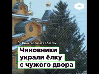 В Нижегородской области чиновники украли ёлку с чужого двора I ROMB