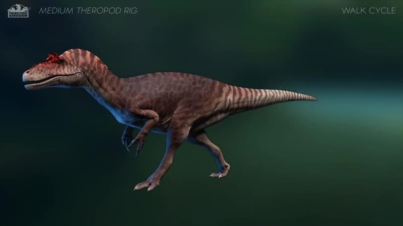 Medium Theropod Animation Preview Allosaurus