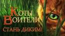КОТЫ ВОИТЕЛИ - 1 Стань Диким! Мои истории про лесных котов.