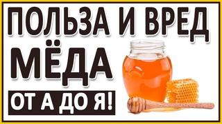 МЁД! Польза и вред Мёда! Правильный мёд. Нагрев, кариес, качество, хранение. Дикий мёд.