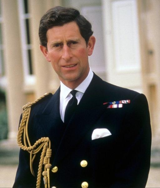 Доминик Уэст может сыграть Принца Чарльза в финальных сезонах «Короны»