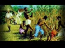 Советы начинающему рабовладельцу от дю Пратца