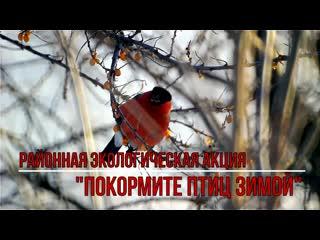 """Районный экологический флешмоб """"Покормите птиц зимой"""""""