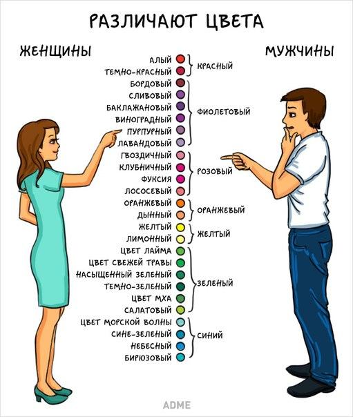 Мужчины и женщины — мы такие разные