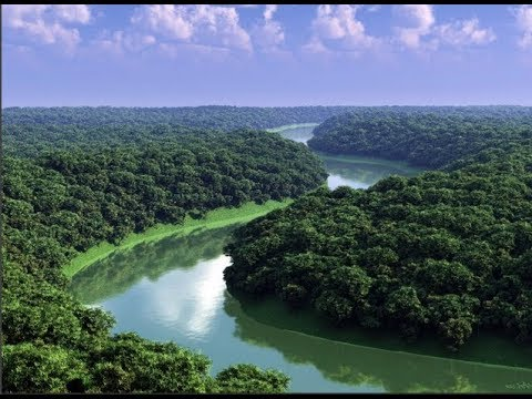 Исчезновение экспедиции в джунглях Амазонки