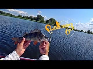 Вот эта окунь, рыбалка на джиг жарким летом