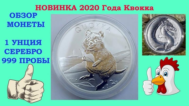 1 $ 2020 ГОД АВСТРАЛИЯ 🔴 КВОККА QUOKKA 🔴 НОВИНКА СЕНТЯБРЬ 2020 ГОД ОБЗОР НОВОЙ МОНЕТЫ
