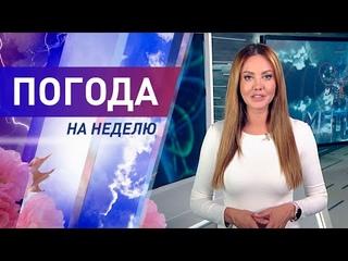 Погода на неделю 26 июля – 1 августа 2021. Прогноз погоды. Беларусь   Метеогид