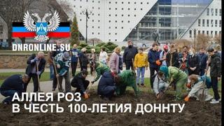 В Донецке в честь 100-летия ДонНТУ высажена аллея роз