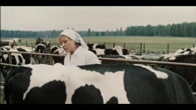 Год телёнка 1986 СССР 720