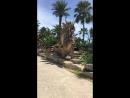 Долина динозавров в парке Нонг Нуч в Паттайе