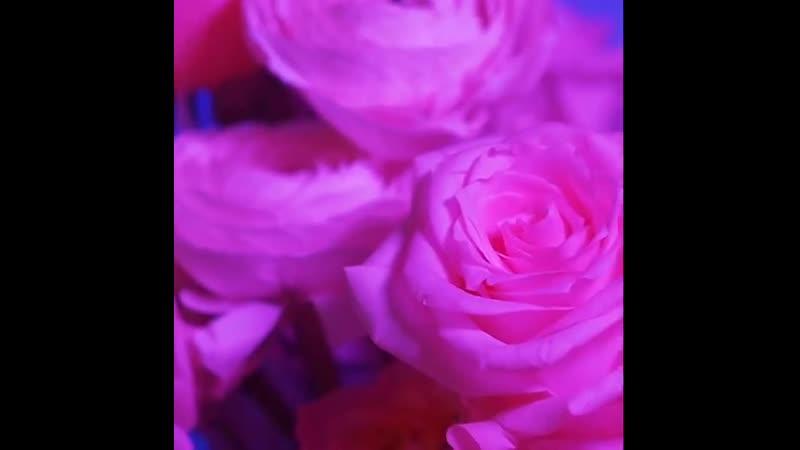 Собирать такие шляпные коробки цветов наша суперсила 😌✨ Это ШИК Антуриум ХИТ среди цветов пионовидные розы манящая орхид