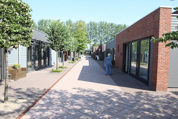 Как сегодня живёт знаменитая голландская деревня, в которой жители поголовно страдают деменцией.