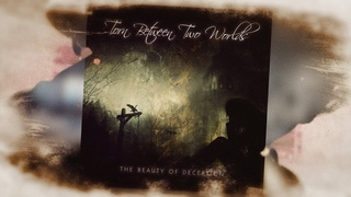 Torn Between Two Worlds - The Beauty Of Deception - Official Lyric Video