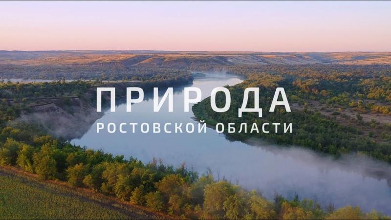 Природа Ростовской области. Неповторимая и удивительная
