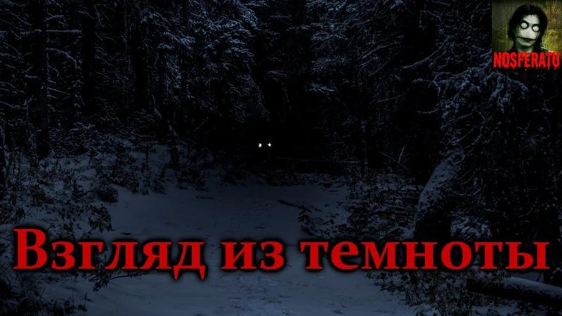Истории на ночь Взгляд из темноты