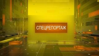 Татьяна Богомолкина Выставка картин Спецрепортаж 260318