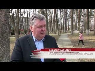 В Ярославле в 2021 начали благоустраивать парк Победы на Липовой горе