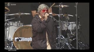 Limp Bizkit - Lollapalooza 2021 - Full Show HD