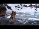 Круиз в Антарктиду на судне National Geographic Explorer. Январь 2013. Туроператор РуКолумб. rucolumb