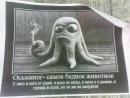 Личный фотоальбом Александра Маркина
