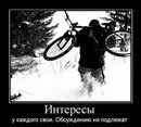 Фотоальбом Романа Кокшарова