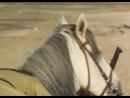 Секрет Сахары The Secret of the Sahara 1988 2 серия
