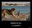 Фотоальбом Сергея Волобуева
