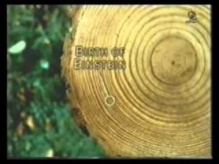 Остановите вырубку лесов! Каннские львы.flv