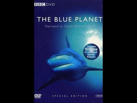 Сериал BBC: Голубая планета/The Blue Planet 1 сезон 1 серия