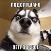 Подслушано...Петровское...