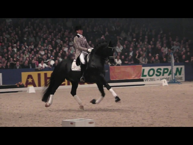 Totilas and Edward Gal KWPN Hengstenkeuring 2010 Den Bosch HD 1080i