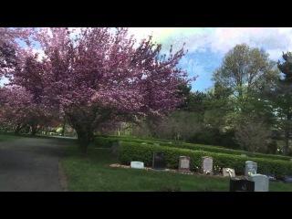 Lena Shtefan - Видео с кладбища Fairview,где похоронена великая певица Уитни Хьюстон ( Нью Джерси)