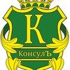 """ООО """"КонсулЪ"""" Кадастр. Оформление недвижимости"""