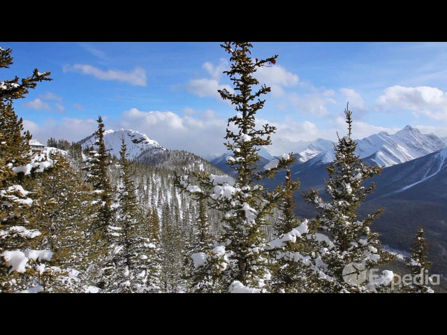 Banff Gondola Vacation Travel Guide Expedia