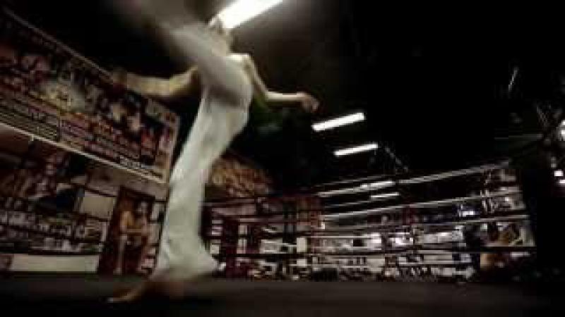 Capoeira Series of blows by Ranto 2rbina 2rista