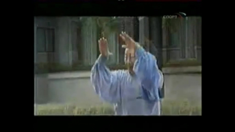 Майстер Лі ши тайцзицюань та Бай юань тунбей Цзінь Чун 82 роки