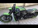 Harley Davidson Green Stripes Night Rod Special, VRSCDX, Custom Bike, Airride HD