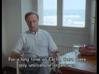 Death by Design (1995, Peter Friedman and Jean-Franois Brunet, documentary)