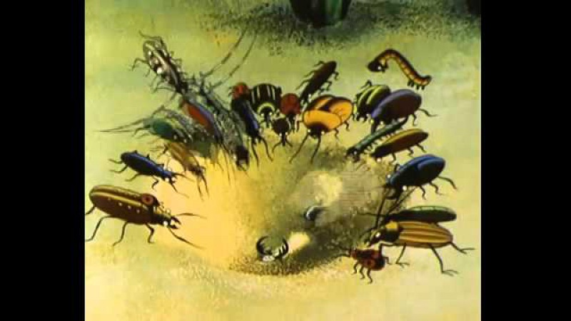 Путешествие муравья Мультфильмы для взрослых 1
