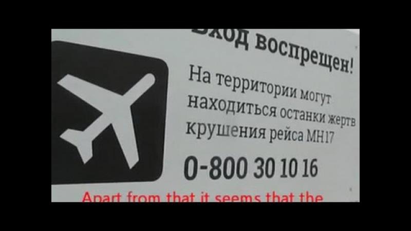ВВС малайзийский Boeing мог сбить украинский истребитель