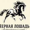 """Литературный сайт """"Черная лошадь"""""""