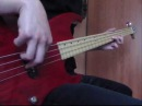 Red Hot Chili Peppers – Don't Forget Me (bass cover by R.G.)