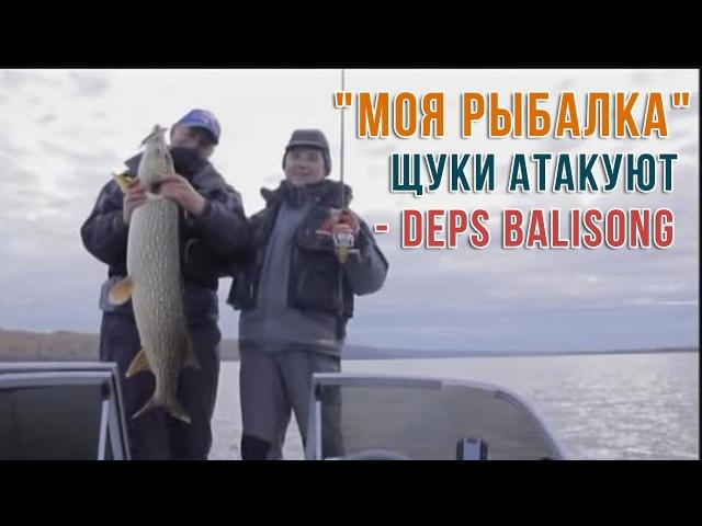 Моя Рыбалка Щуки атакуют Deps Balisong