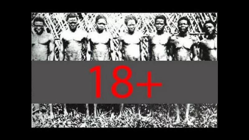 18 ШОК Африканское Племя Бубал