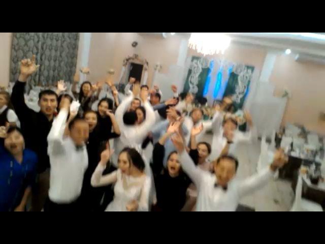 Ibragimov sagin video