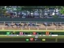 American Pharoah wins the Triple Crown 2015 Belmont Stakes G1
