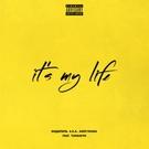 Обложка It's My Life - Эндшпиль feat. TumaniYO